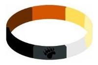 Handgelenkband Bear Pride