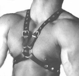 Torso Harness, 35 mm
