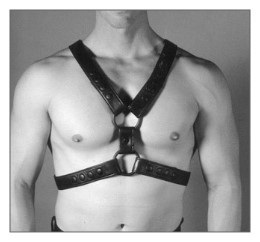 English RED Top Harness